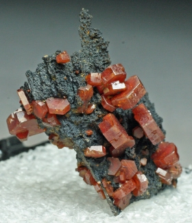 Vanadinite on Goethite from Atlas Mountains, Morocco [db_pics/July_2011/Vanadinite1c.jpg]