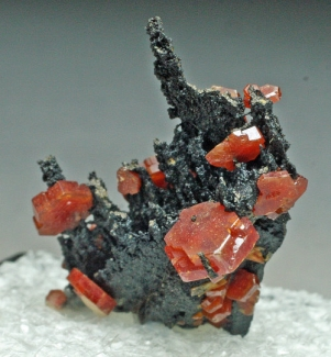 Vanadinite on Goethite from Atlas Mountains, Morocco [db_pics/July_2011/Vanadinite1d.jpg]